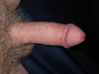 Very, very nice cock.  I love all the hair and I'd love to have you in my mouth!