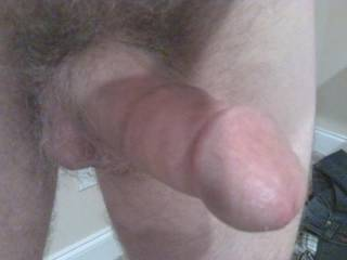 would be great to swallow your cock!!!!!