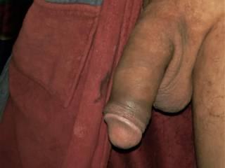 latin penis