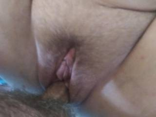 Furry pussy getting fucked good