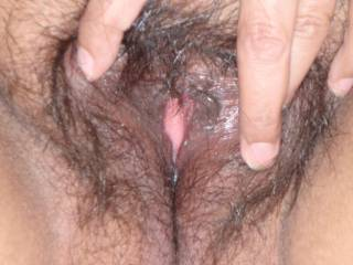 My wife's hairy pussy right before a trim!