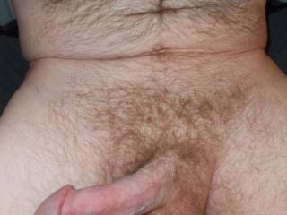 Mmmmm, nice delicious cock....is it ready for me to fondle and suck?  MILF K