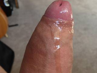 was so horny that my cock started dripping