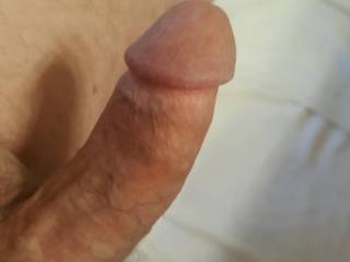 Mature gentleman that loves to pleasure my wife.   Do you like pleasure?