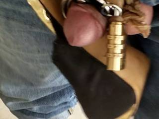 Clitty dick chasity
