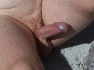 sunny dicks on beach
