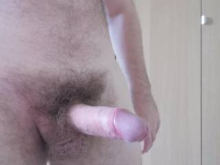 Throbbing hard, working from home about to turn into wanking from home....