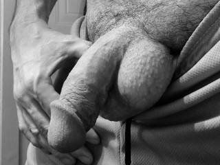 My soft cock for you