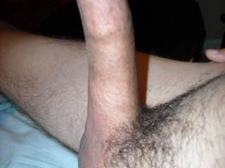damn that is so big and hard. I'd love guiding it into my wifes pussy
