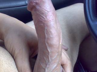 huge cock i would love to suck, so big and hard