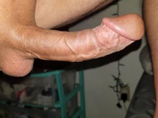 Long hard cock