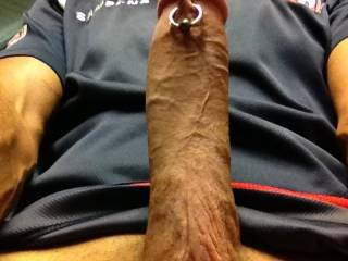 My cock who wants a ride tell me, any aussie ladies want a ride contact me
