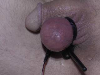 One electrode attached to one ball and the other buried in my butthole ! Now to power up and have some fun !