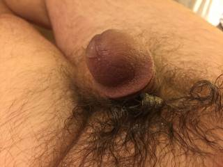 I shot a huge cumshot that I rubbed all over... while enjoying the post-cum bliss, my dick started drooling more cum