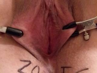 I use her nipple clamp to clap her pussy lips and pulled it open to see her gorgeous cunt.