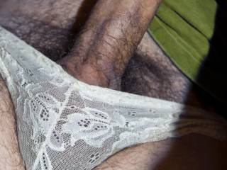 the panties yes the cock nice big hard just right for my pussy