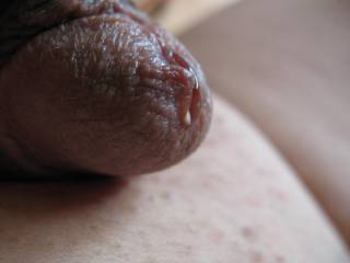 Look what happens when I let him out to play.  I see some precum there, do you?