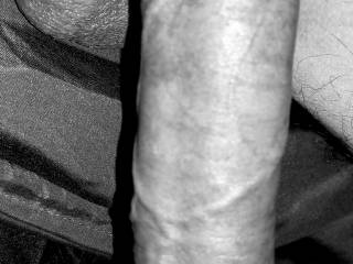 Big soft cock in Black and white