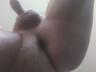 Freshly Smoothly Shaved & Oiled Cock, Scrotum and Ass