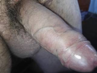Hard cock ready to play
