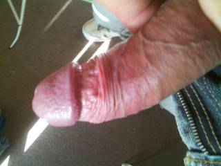 Thick bluevein cock, ready. Need it mouthed, who would?
