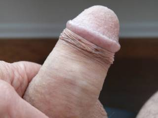 Nice fat cock for soft mouth