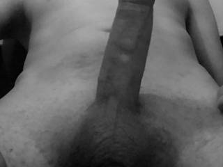 black and white picture of juniorke ,my dick