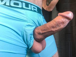 Rock hard big veiny cock