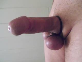 That is just gorgeous....smooth and so thick and hard....fabulous...x