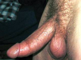 my hard cock, I am much more trimmed now
