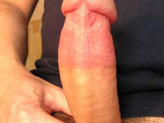 """This is my hard 7"""" thick uncut cock. Would luv to join female or couple for spermy fun. Location: Hampshire UK"""