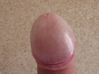 It's a nice and sweet nipple, perfectly shapped, big size, just perfect for me to suck before to go to bed, every night...