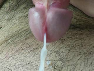Releasing my creamy cum ! I need a girl to help me to clean ! Interested ?