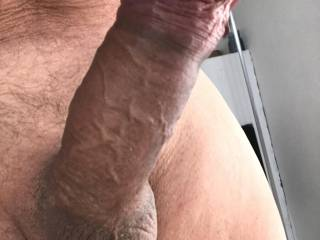 Morning cock