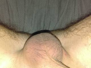 Been soft, flaccid,& full for to long any takers on hempng him get nice and hard and empty