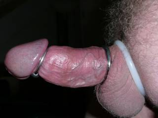 hard dick with cockrings