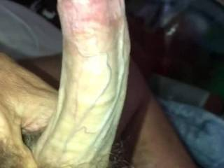 Morning Wood!! Hey had to stroke him or he'd be upset!