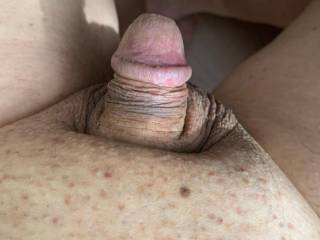 Just sitting here naked on a lazy Friday afternoon and my cute little cock is taking a rest.