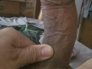Horny morning