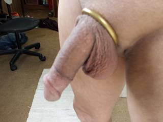Gorgeous shaved cock and balls ! ! !