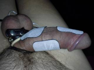 Love to estim my cock..i give my cock a good work out often..3 to 4 hours sessions at a time..getting myself off as many times as I can before I becum exhausted. hope you do too..and like my pics.