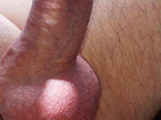 a little sun for my cock, wearing hooked cockring with ass intruder