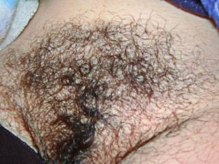 Yes I love your hairy pussy would love to rub my face all over your hairy pussy then run my in your hairy pussy.