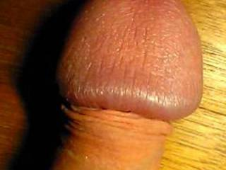 """Out of Lovolust's Blusheroticon; subject: My glans, as made of wood! Women say, """"(one of) the largest, greatest, most hardened, most beauteous penis-head(s)!"""" - real, unfaked, true, genuine pix - from funny through sexy-porny up to brutal; for the Women!"""