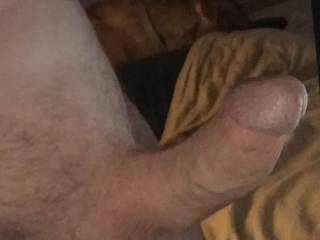 Looking at Zoig made me rock hard, I could use a hot fuck buddy. Who wants to have some fun?