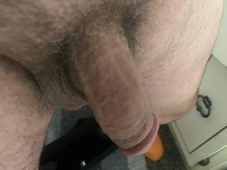 Just hanging , might be time for a shave !!