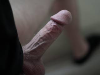 Getting my cock hard before I jack off.