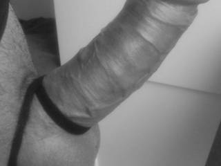 Very horny and I really need somewhere to put this - any suggestions?
