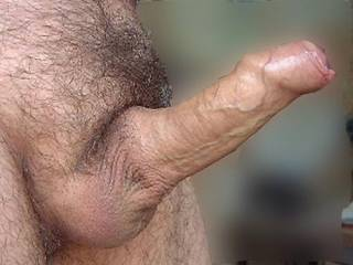 My uncut cock. Let me know what you think, or what you\'d like to do with it!