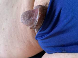 My little guy wanted to try on this blue thong for look and feel.  He does look pretty cute here.